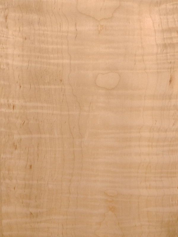 Curly Soft Maple